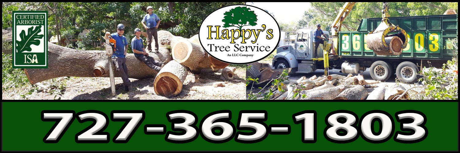 Happy's Tree Service, LLC