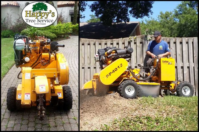 Grinding stump in clearwater fl