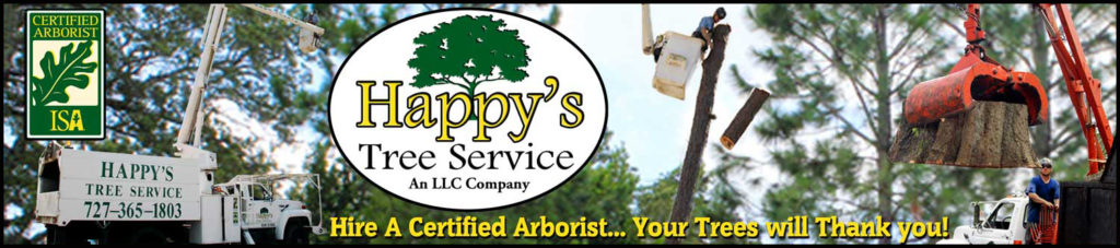 Company Image of Happy's Tree Service